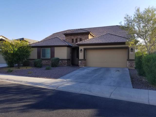 7969 W Redbird Road, Peoria, AZ 85383 (MLS #6005112) :: CC & Co. Real Estate Team