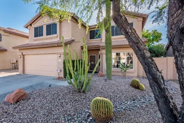 26225 N 45TH Street, Phoenix, AZ 85050 (MLS #6005123) :: The Laughton Team
