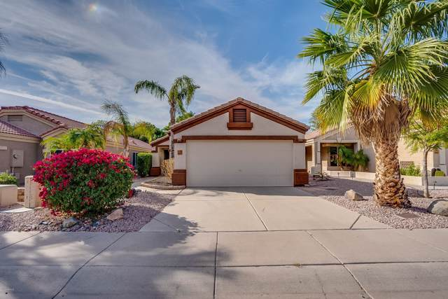 20250 N 30TH Place, Phoenix, AZ 85050 (MLS #6005151) :: Brett Tanner Home Selling Team