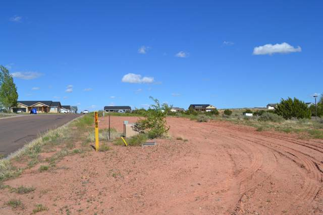 815 E Cobble Lane, Taylor, AZ 85939 (MLS #6005194) :: Riddle Realty Group - Keller Williams Arizona Realty