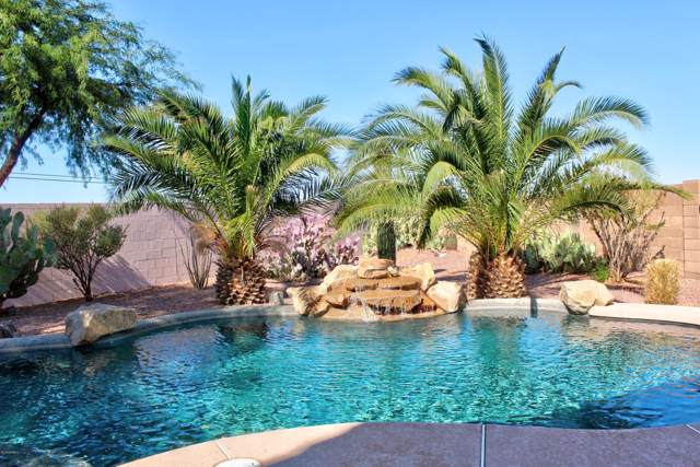 30340 N Cholla Drive, Florence, AZ 85132 (MLS #6005282) :: The Property Partners at eXp Realty