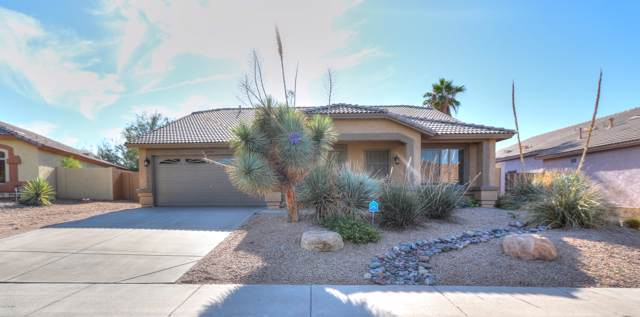 11304 S Palomino Lane, Goodyear, AZ 85338 (MLS #6005292) :: Openshaw Real Estate Group in partnership with The Jesse Herfel Real Estate Group