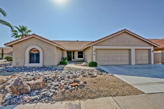 9135 W Palm Tree Drive, Peoria, AZ 85382 (MLS #6005442) :: The Laughton Team