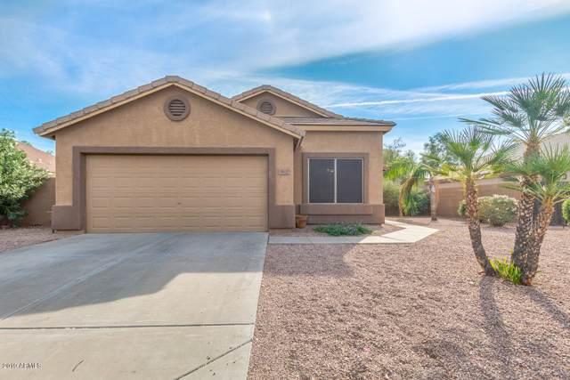 8625 E Pampa Avenue, Mesa, AZ 85212 (MLS #6005452) :: Yost Realty Group at RE/MAX Casa Grande