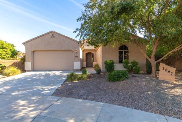 4897 E Hazeltine Court, Chandler, AZ 85249 (MLS #6005483) :: Revelation Real Estate