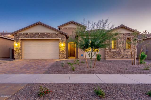 1421 E Beth Drive, Phoenix, AZ 85042 (MLS #6005518) :: Occasio Realty