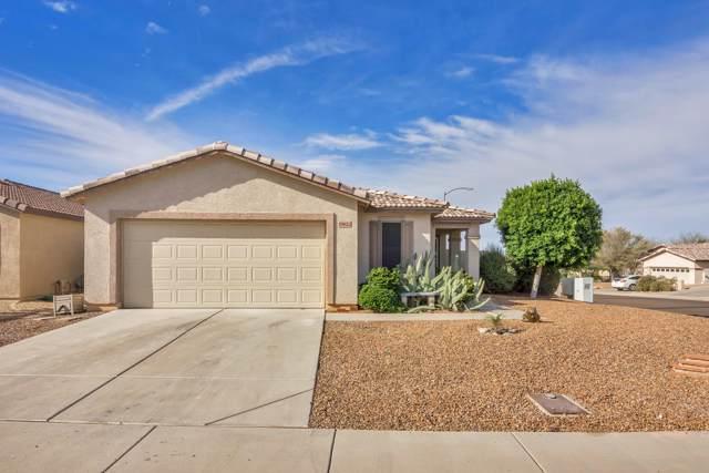 19622 N 107TH Drive, Sun City, AZ 85373 (MLS #6005656) :: The Daniel Montez Real Estate Group