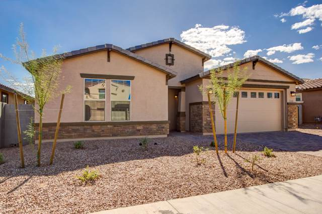 1325 E Aquarius Place, Chandler, AZ 85249 (MLS #6005731) :: Revelation Real Estate