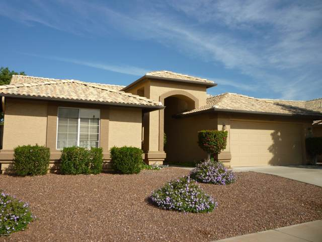 10822 W Mohawk Lane, Sun City, AZ 85373 (MLS #6005736) :: CC & Co. Real Estate Team