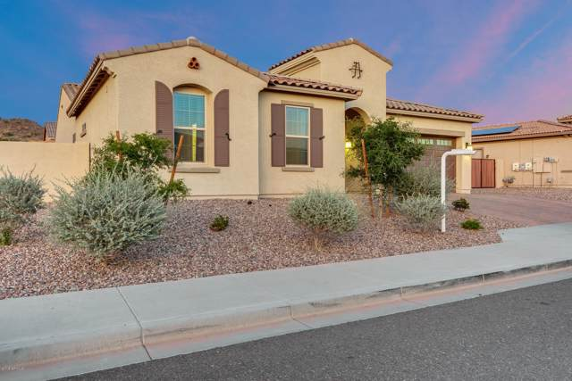 10128 W Spur Drive, Peoria, AZ 85383 (MLS #6005757) :: Occasio Realty