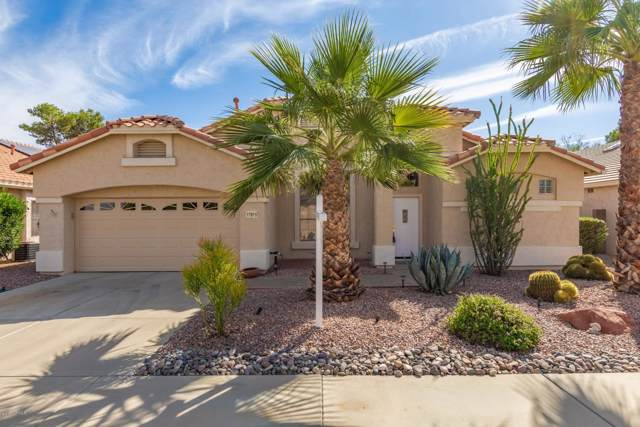 17819 W Holly Drive, Surprise, AZ 85374 (MLS #6005872) :: Riddle Realty Group - Keller Williams Arizona Realty