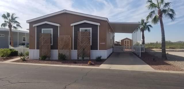 2000 S Apache Road #163, Buckeye, AZ 85326 (MLS #6005942) :: Riddle Realty Group - Keller Williams Arizona Realty