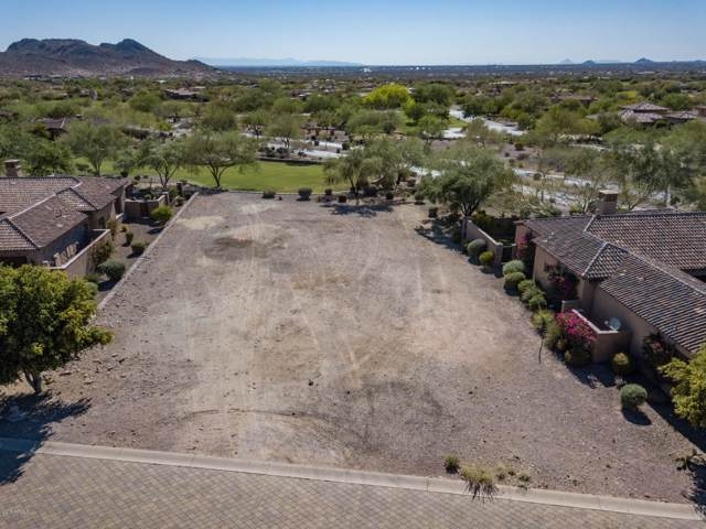2928 S Prospector Circle, Gold Canyon, AZ 85118 (MLS #6005987) :: Nate Martinez Team