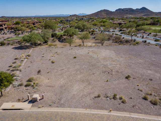 3135 S Prospector Circle, Gold Canyon, AZ 85118 (MLS #6006007) :: Nate Martinez Team