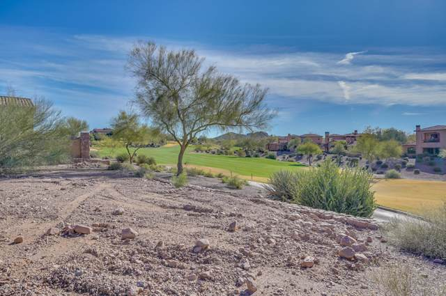 3089 S Prospector Circle, Gold Canyon, AZ 85118 (MLS #6006017) :: Nate Martinez Team