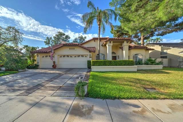1125 E Southshore Drive, Gilbert, AZ 85234 (MLS #6006082) :: CC & Co. Real Estate Team