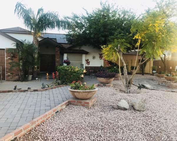 3801 E Beck Lane, Phoenix, AZ 85032 (MLS #6006097) :: Dijkstra & Co.