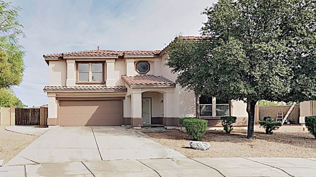 2182 E Hawken Way, Chandler, AZ 85286 (MLS #6006109) :: Arizona 1 Real Estate Team