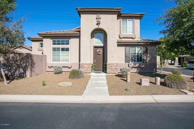 3904 E Minton Street, Phoenix, AZ 85042 (MLS #6006129) :: Dijkstra & Co.