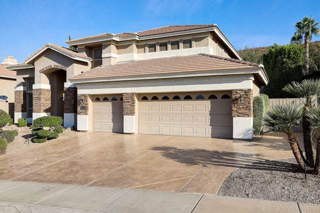 6556 W Robin Lane, Glendale, AZ 85310 (MLS #6006204) :: Occasio Realty