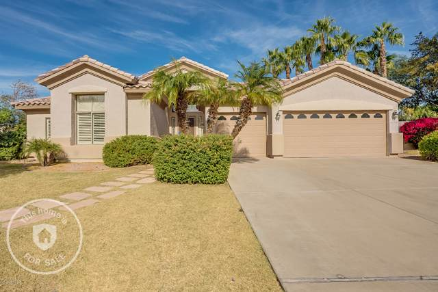 4230 E Elmwood Street, Mesa, AZ 85205 (MLS #6006213) :: The Laughton Team