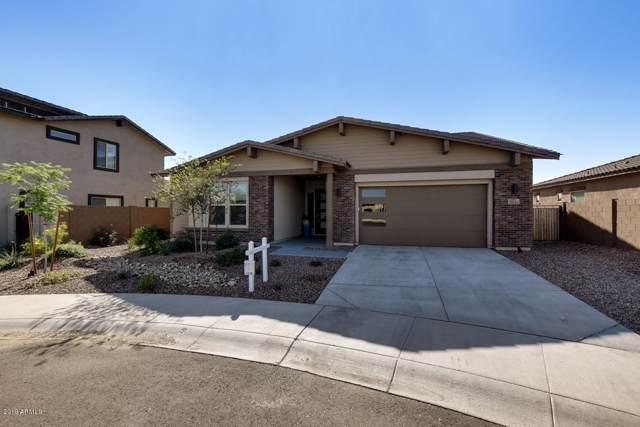 13869 W Harvest Avenue, Litchfield Park, AZ 85340 (MLS #6006248) :: Dijkstra & Co.