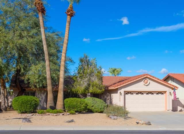15804 N 15TH Way, Phoenix, AZ 85022 (MLS #6006286) :: The Kenny Klaus Team