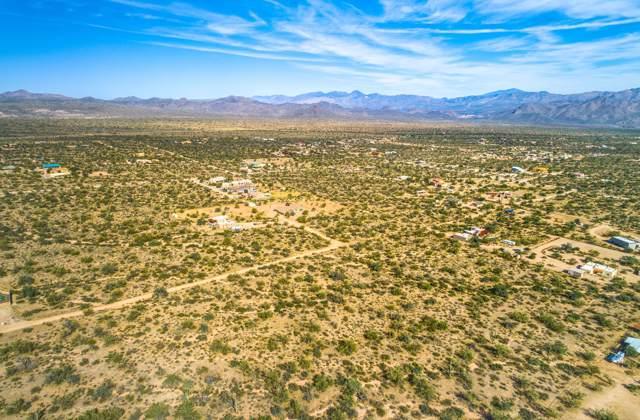 16100 E Wildcat Drive, Scottsdale, AZ 85262 (MLS #6006322) :: The Laughton Team