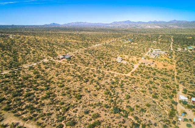16100 E Wildcat Drive, Scottsdale, AZ 85262 (MLS #6006326) :: The Laughton Team