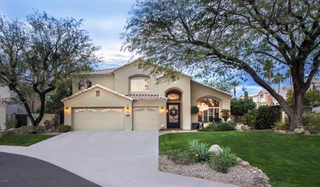 737 E Mountain Sage Drive, Phoenix, AZ 85048 (MLS #6006396) :: CC & Co. Real Estate Team