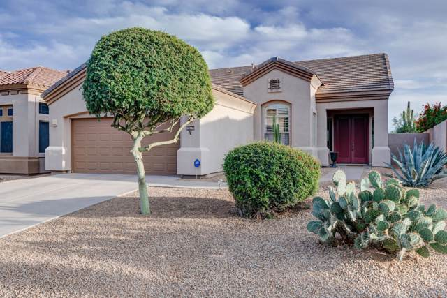 15733 E Cactus Drive, Fountain Hills, AZ 85268 (MLS #6006421) :: Santizo Realty Group