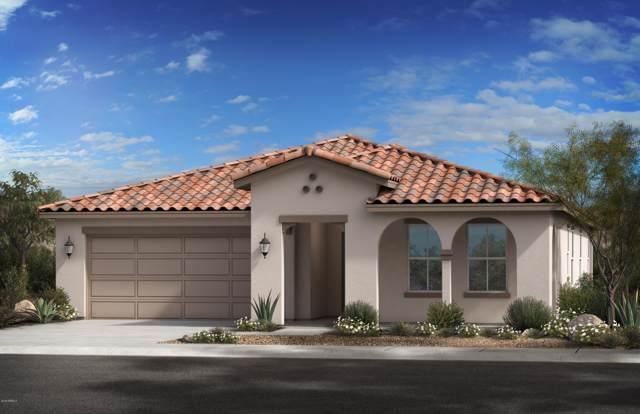 8204 W Sands Road, Glendale, AZ 85303 (MLS #6006519) :: Brett Tanner Home Selling Team