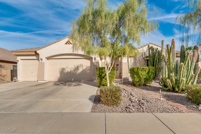 1716 E Carob Drive, Chandler, AZ 85286 (MLS #6006527) :: Revelation Real Estate