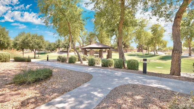 5142 S Citrus Lane, Gilbert, AZ 85298 (MLS #6006542) :: Revelation Real Estate