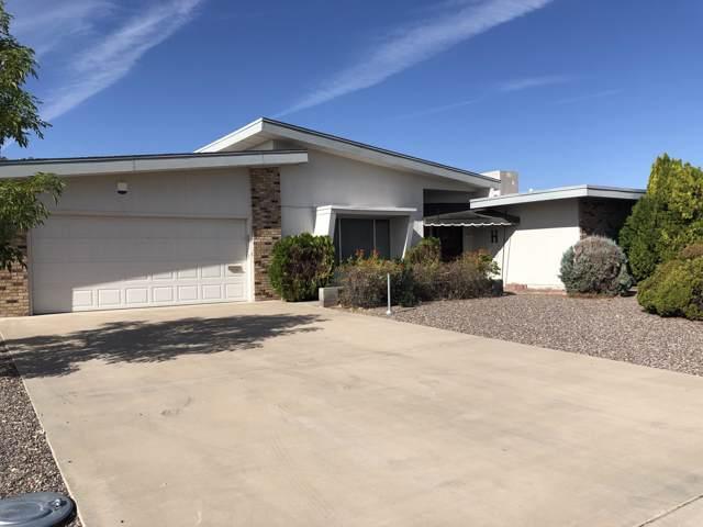 9209 W Briarwood Circle, Sun City, AZ 85351 (MLS #6006597) :: neXGen Real Estate