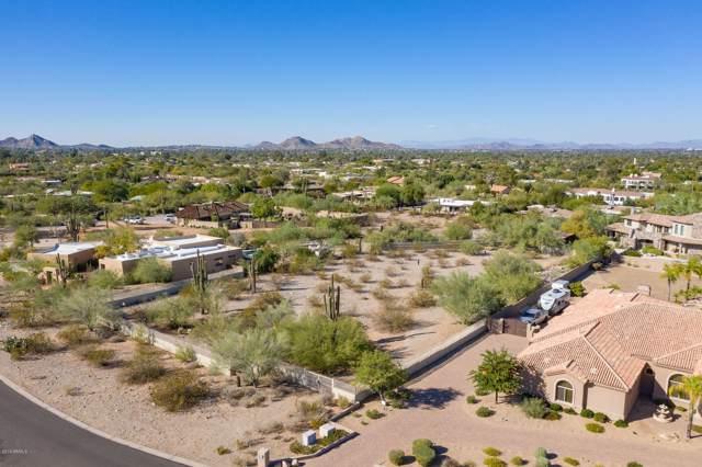 4124 E Fanfol Drive, Phoenix, AZ 85028 (MLS #6006733) :: Lucido Agency