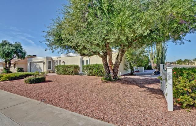 9402 W Shiprock Drive, Sun City, AZ 85351 (MLS #6006795) :: Brett Tanner Home Selling Team