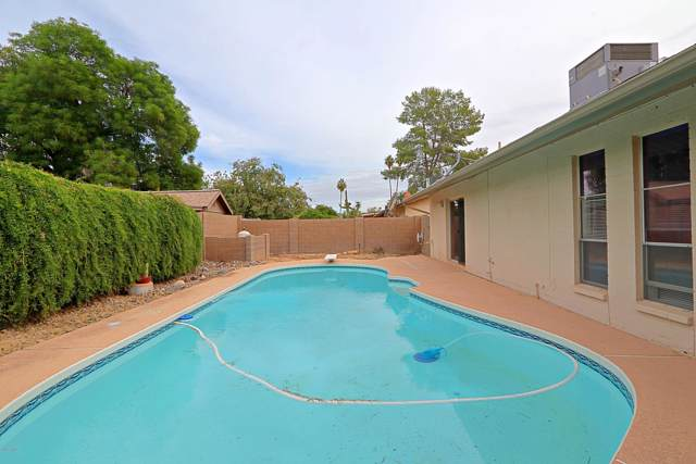 12410 N Columbine Drive, Phoenix, AZ 85029 (MLS #6006838) :: Kepple Real Estate Group