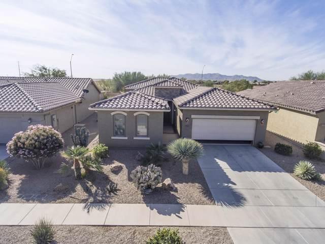 2665 E Santa Maria Drive, Casa Grande, AZ 85194 (MLS #6006931) :: Dijkstra & Co.