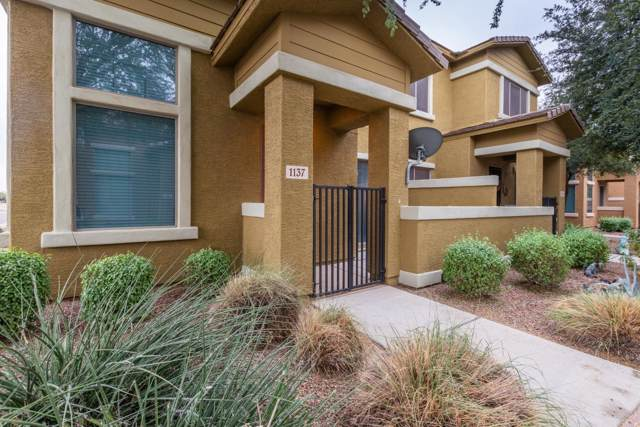 15240 N 142ND Avenue #1137, Surprise, AZ 85379 (MLS #6006942) :: The Kenny Klaus Team
