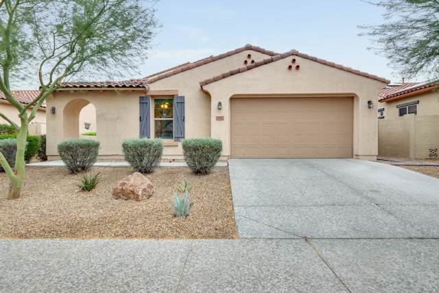18042 W Thunderhill Place, Goodyear, AZ 85338 (MLS #6006952) :: Nate Martinez Team