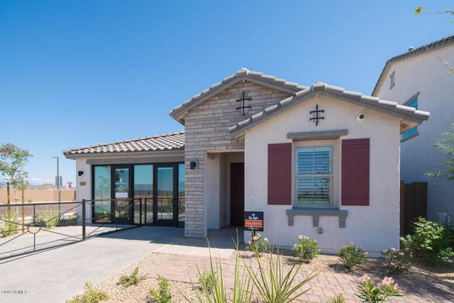 25120 N 143RD Drive, Surprise, AZ 85387 (MLS #6007129) :: Yost Realty Group at RE/MAX Casa Grande