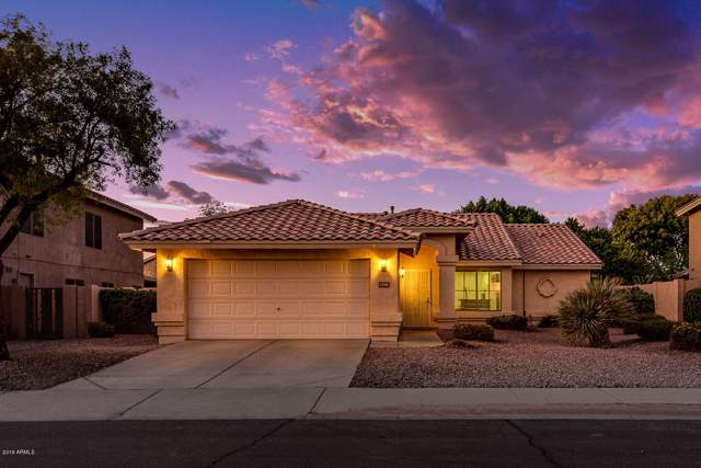 1210 W Goldfinch Way, Chandler, AZ 85286 (MLS #6007211) :: My Home Group