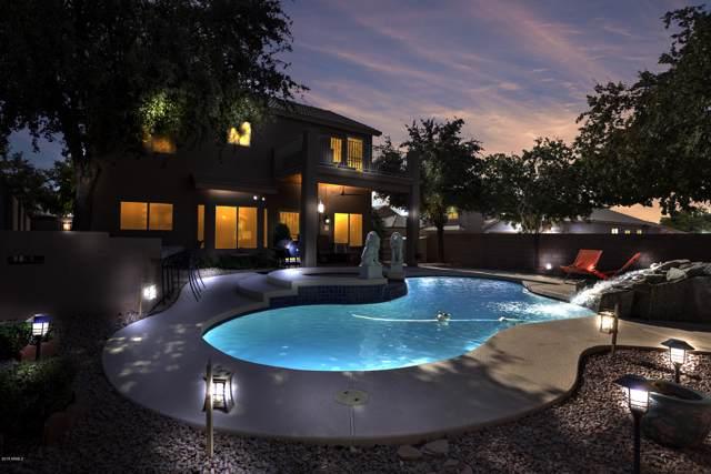 4204 E Tether Trail, Phoenix, AZ 85050 (MLS #6007284) :: Brett Tanner Home Selling Team