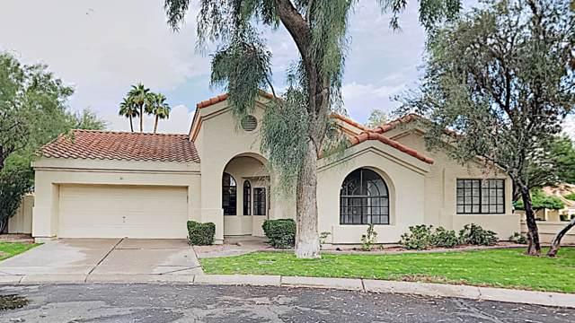 8 W Greentree Drive, Tempe, AZ 85284 (MLS #6007303) :: Santizo Realty Group