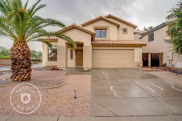 2019 E Daley Lane, Phoenix, AZ 85024 (MLS #6007369) :: The Kenny Klaus Team