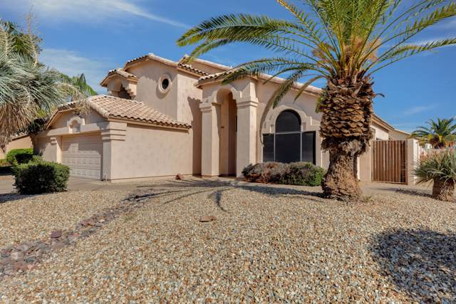 685 N Sycamore Court, Chandler, AZ 85224 (MLS #6007382) :: Openshaw Real Estate Group in partnership with The Jesse Herfel Real Estate Group