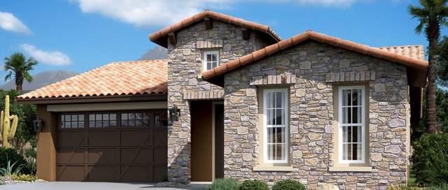 12495 E Parsons Peak, Gold Canyon, AZ 85118 (MLS #6007408) :: Brett Tanner Home Selling Team