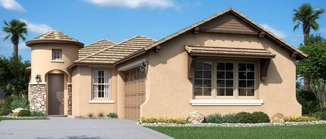 7630 S Lone Pine Place, Gold Canyon, AZ 85118 (MLS #6007419) :: The Everest Team at eXp Realty