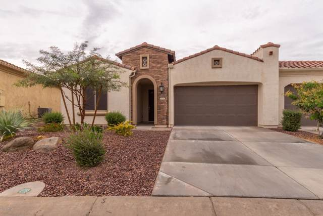 16362 W Amelia Drive, Goodyear, AZ 85395 (MLS #6007439) :: Revelation Real Estate